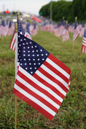 memorial day: A lot of american flags. Memorial Day or Independence Day celebration in USA Stock Photo