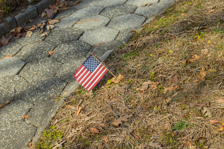 Small American flag at National cemetery- Memorial Day display