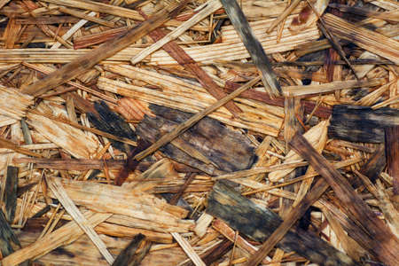 wood molding: the texture of the plywood is wet