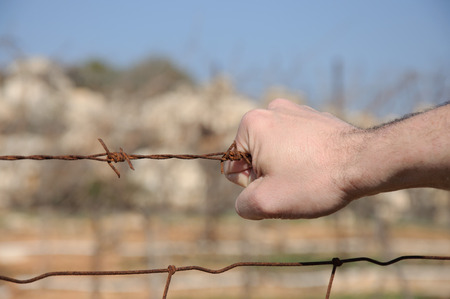 Rusty barbed wire in a man photo