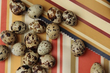 quail eggs scattered on a colored striped background
