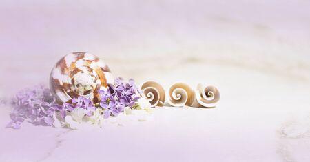 Purple blurred spa background. Seashells, lilac and white small flowers in a purple haze on travertine background. Beautiful bokeh backdrop.