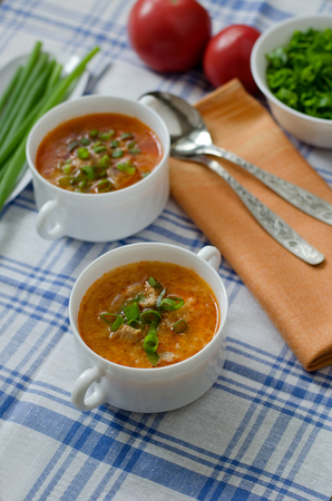 green onions: Tomato soup with rice and meat dusted with chopped green onions. Stock Photo