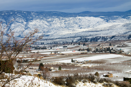 vinery: Snowy valley with vinery  in British Columbia in Canada Stock Photo