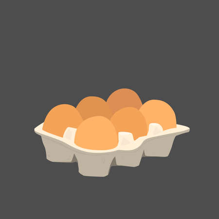 Six chicken eggs in a carton box. Vector flat illustration on black background.