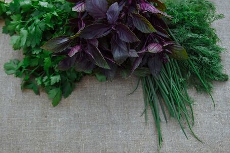 bunches of dill, parsley, green onions and basil on a linen tablecloth top view