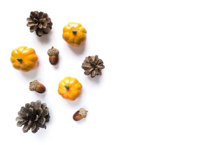 Isolated autumn background of fruits and vegetables: pumpkins, acorns and pine cones on a white background with copy space. Halloween and harvest concept.