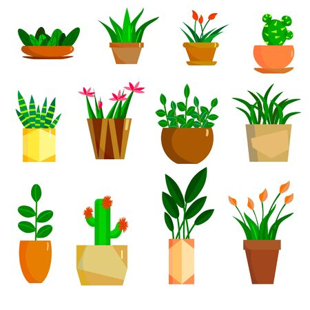 A set of flowers in pots. Vector illustration. Иллюстрация