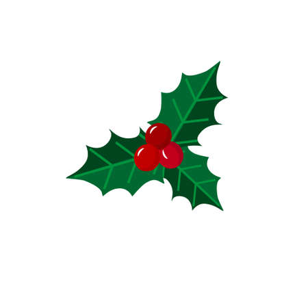 Decorative element - holly with berries. Christmas and New Years attributes