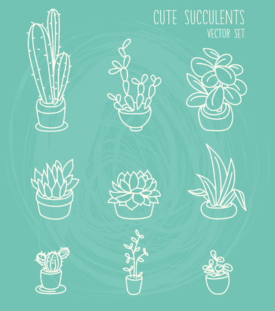 Set of cute potted plants, cartoon style, vector illustration