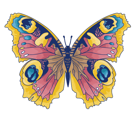 Beautiful butterfly sketch style illustration.