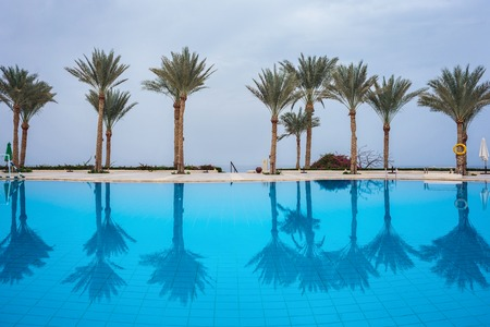 palm trees against the sky reflected in a beautiful clean pool
