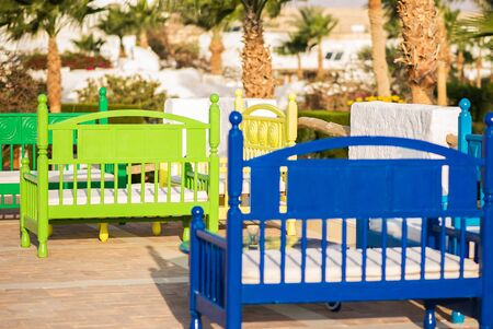 colored benches on the background of palm trees in a bright sunny day