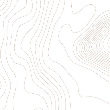 Contour vector illustration. Abstract topographic map background. Geography scheme. 免版税图像