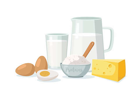 Dairy produce isolated on white. Beef, egg, cheese and curd. Vector Illustration