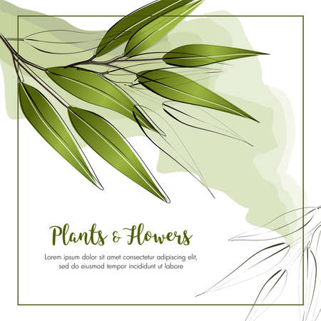 Summer background with frame and green  leaves. Vector template
