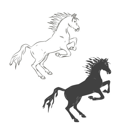 Vector illustration,  hand-drowing horse black and white.
