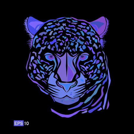 leopard head: illustration, multicolored leopard head isolated on a black background.