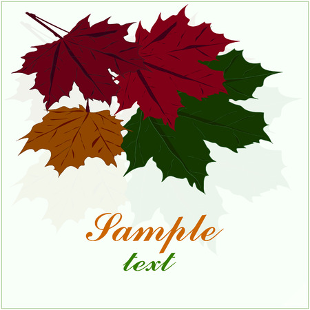 illustration, maple leaf greeting card isolated on a black background.