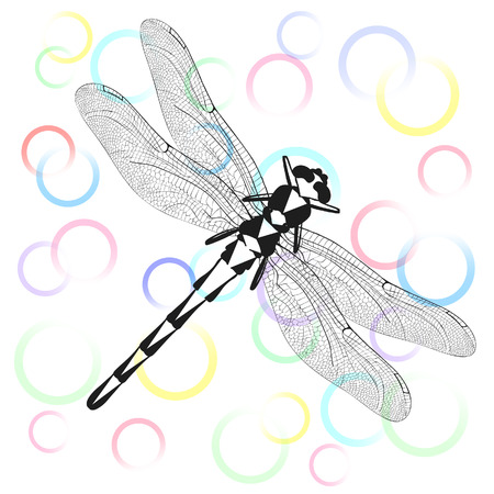 illustration, greeting card with colorful circles and black shape of dragonfly.