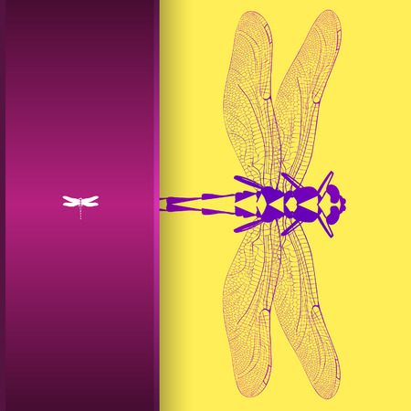 illustration, greeting card with colorful dragonfly.