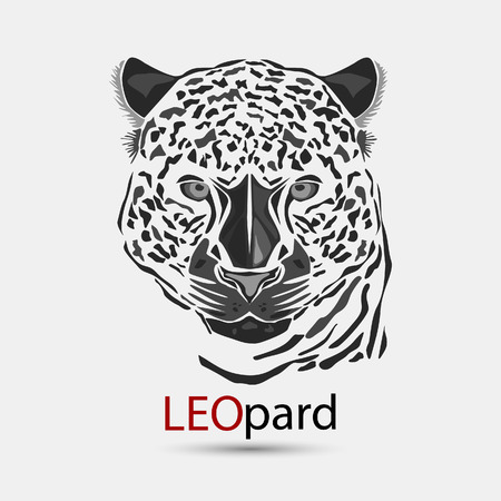 leopard head: illustration, leopard head isolated on a white background.