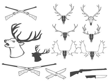Vector illustration,set of hunting attributes.