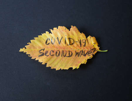 Concept on a black background of a faded autumn bouquet with the inscription covid -19 of the second wave. Stok Fotoğraf