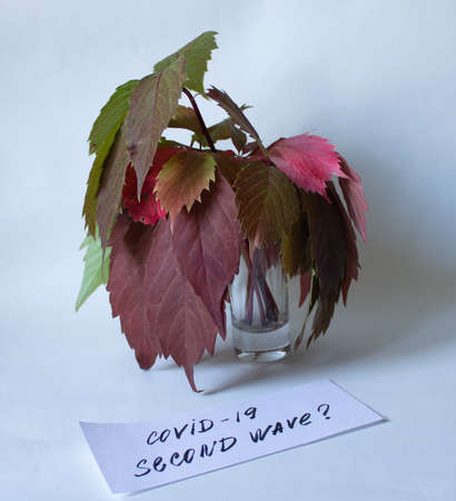 Concept on a white background of a faded autumn bouquet in a glass with the inscription covid -19 of the second wave.
