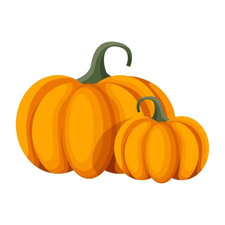 Vector Orange Pumpkin. Isolated Illustration on a White Background.
