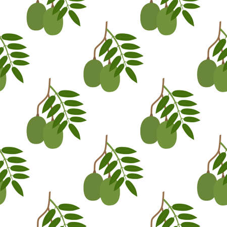 Ambarella Fruit. Seamless Vector Patterns on White Background Vectores