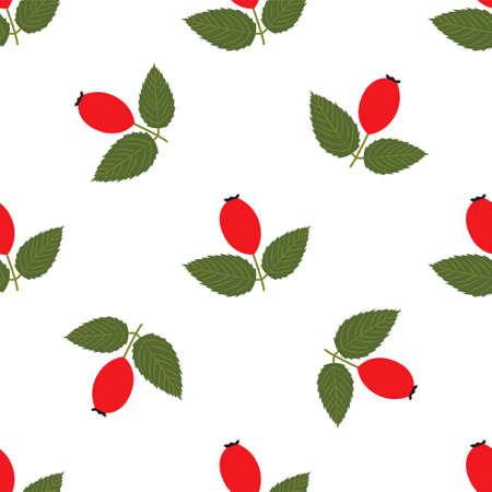 Rose hip. Seamless Vector Patterns on White Background