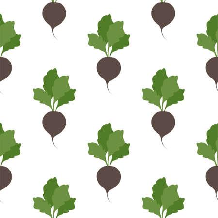Black radish. Vegetables, healthy food. Seamless Patterns Illustration