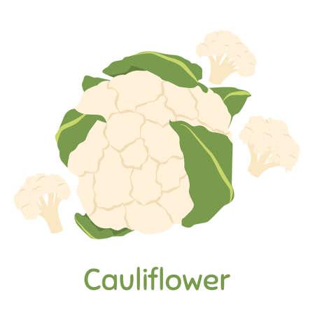 Cauliflower. Fresh and healthy food.