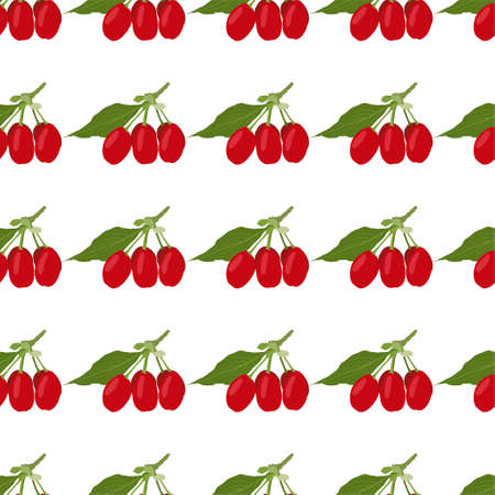 Dogwood berry. Fresh and healthy food. Seamless Vector Patterns