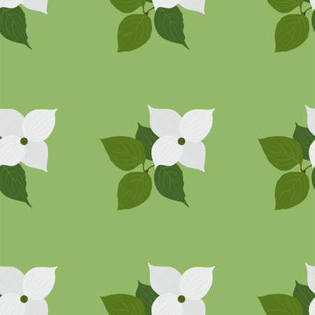 Dogwood. Seamless flower pattern background. Vector