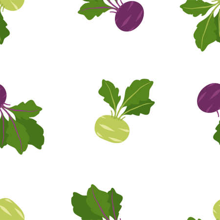 Vegetable Cabbage Kohlrabi. Fresh and healthy food. Seamless Patterns