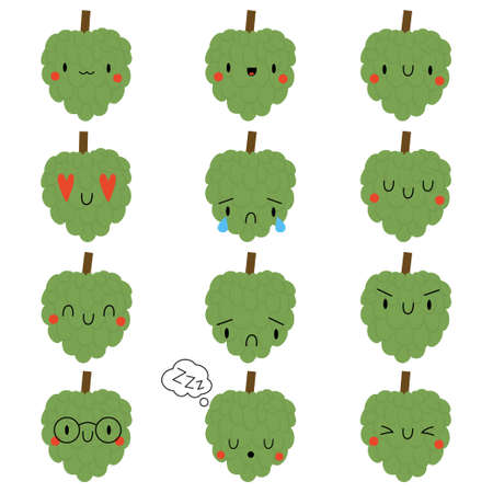Set of cartoon Annona with face expression
