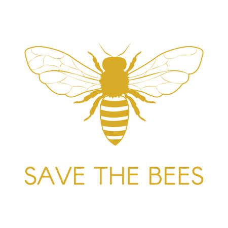 Save the bees. Honey Bee. Vector illustration
