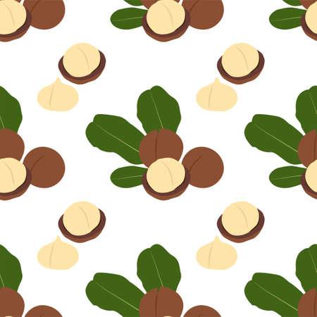 Macadamia nut. Cosmetic and medical plant. Vector seamless pattern EPS. Illusztráció