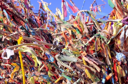 Colorful ribbons and scraps on wishes tree Stock Photo