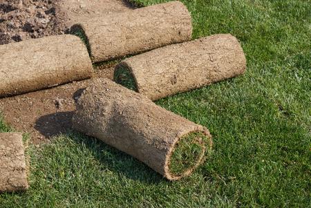 Roll gras op het gazon klaar