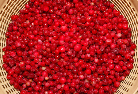 defrost: cowberry  during defrost in a colander