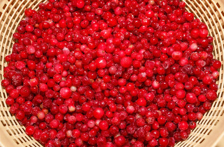 defrost: cowberry during defrost in a colander Stock Photo