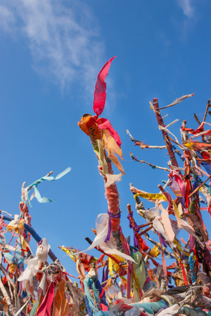 enmesh: Colorful ribbons and scraps on wishes tree in Cesme, Turkey