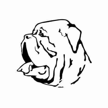 Vector Silhouette von Dogue de Bordeaux Französisch Mastiff Portrait Standard-Bild - 44351257