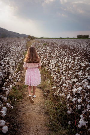 Beautiful little girl with long hair and in pink dress in cotton field.
