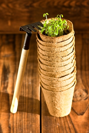 Peat pots and garden tools on wood background photo