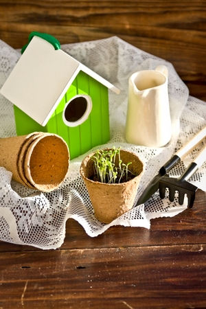 birdhouse: Peat pots, bird-house, seedlings and garden tools on wood background