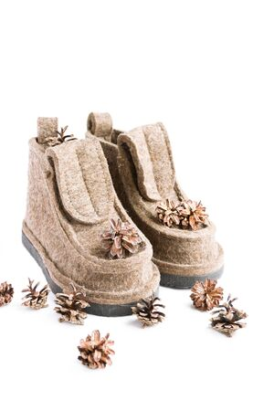 Winter felt boots, old vintage camera, pine cones and scarf